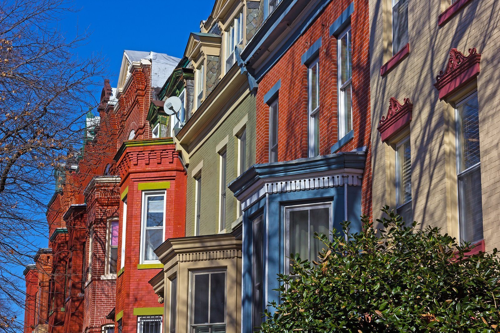 row houses in washington dc
