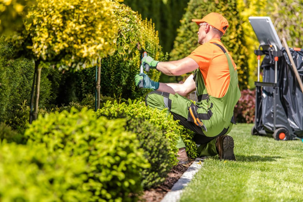 Rental Property Summer Landscaping Tips