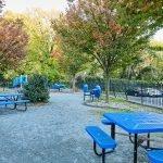 picnic area next to playground