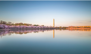 Parkland alongside Potomac River is among the best parks in McLean, Virginia