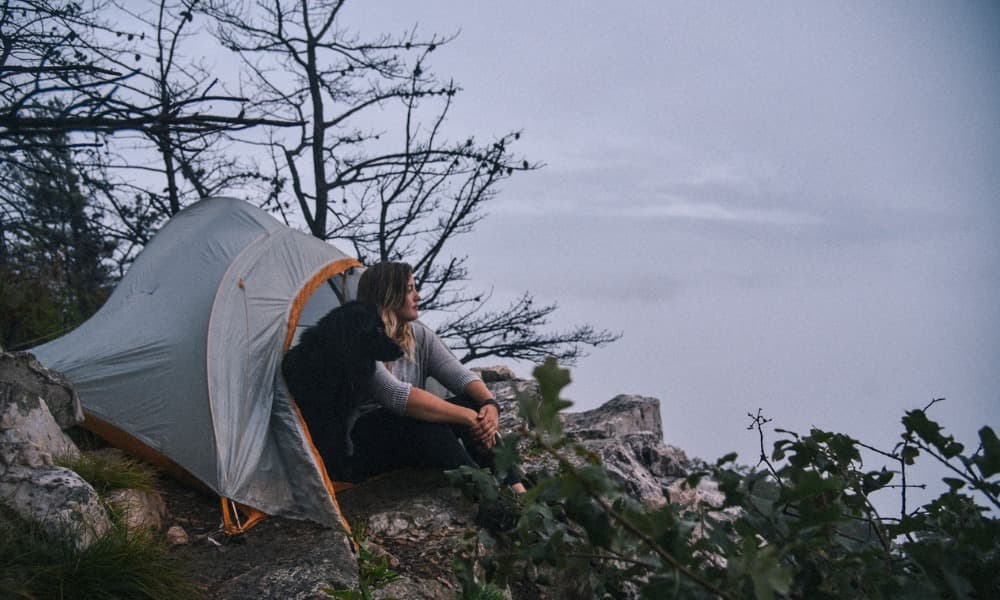 a woman and her dog in a tent in Shenandoah National Park, one of the best places for camping Northern Virginia